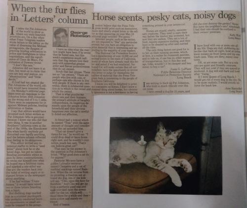 cat letter response_edited