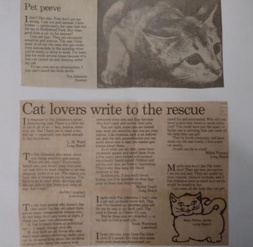 dad cat letter