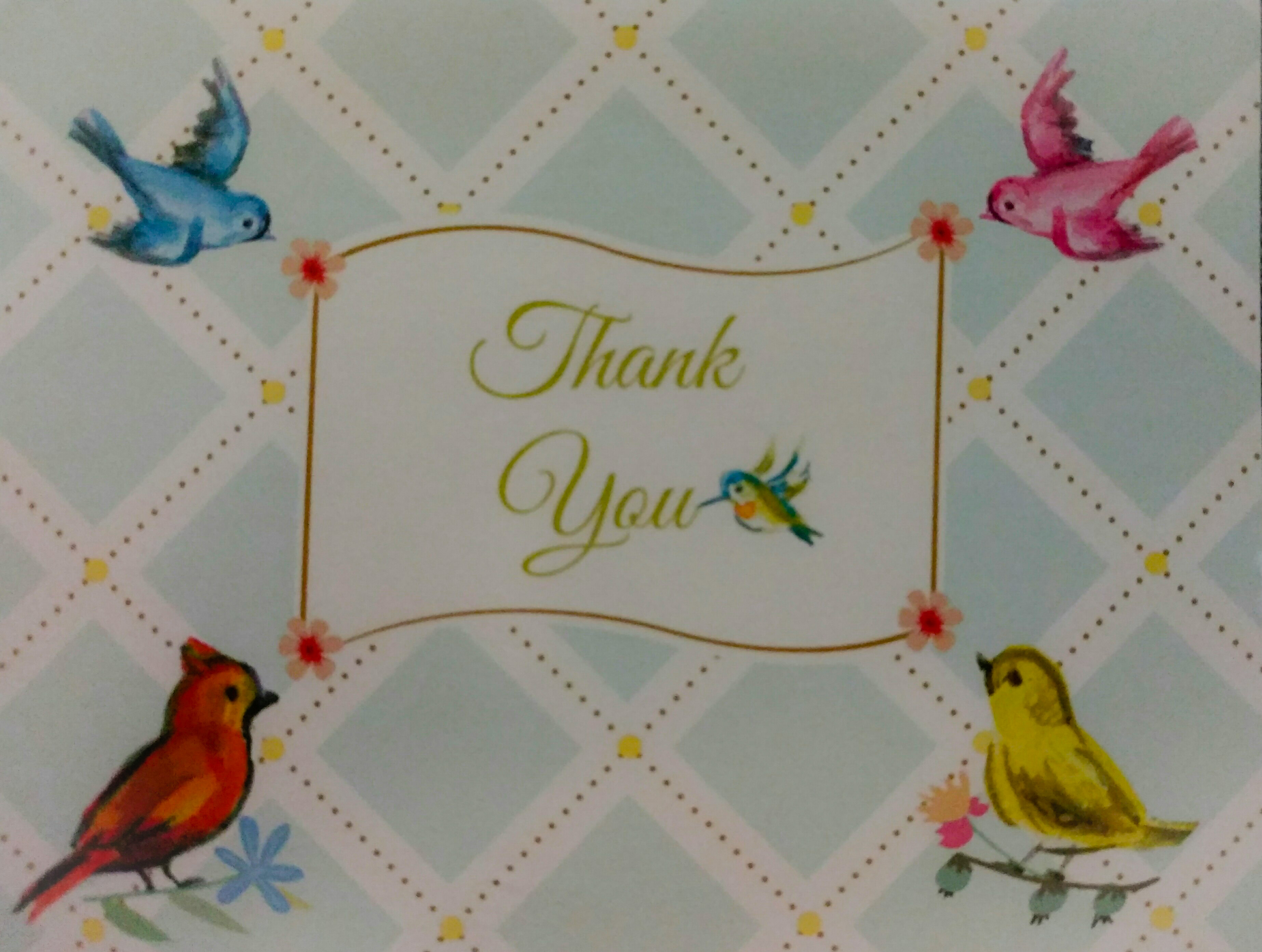 thank you card_edit