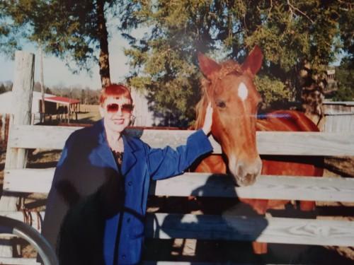mom horse