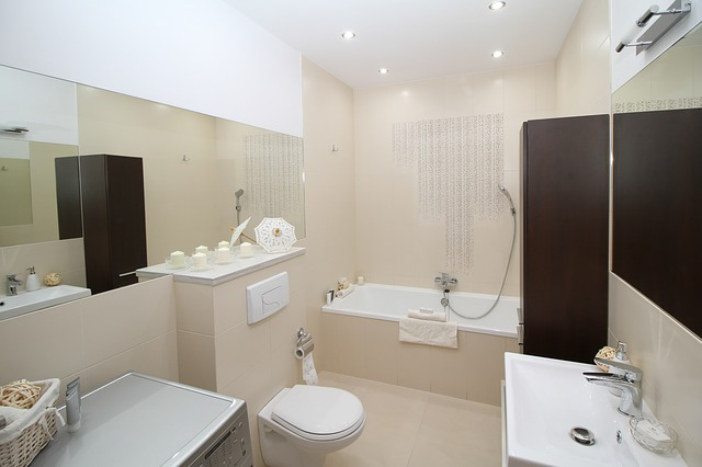 bathroom-2094733_640_edited